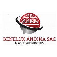 BENELUX ANDINA SAC Planchas A/SA 612 , Vigas de acero y canales ASTM A 36, bobinas de aluzinc ASTM