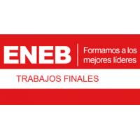 Asesoro trabajos finales del MBA ENEB
