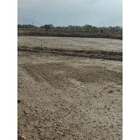 Gran Oportunidad venta de 10 Hectáreas De Terreno Agrícola Arrocero