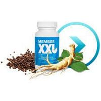 Member XXL  crecimiento y Desarrollo 967991500